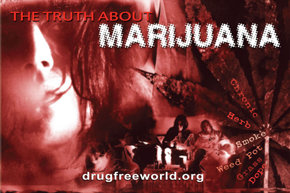 The Truth About Marijuana